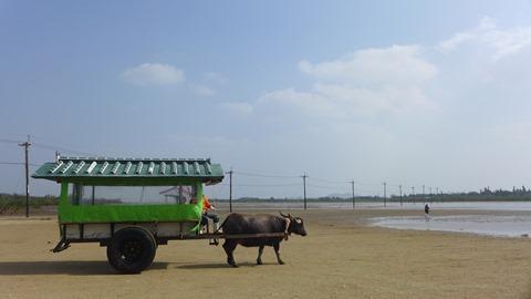 由布島(ゆぶじま)の水牛車