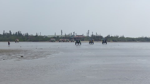 由布島の水牛車の画像