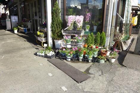 黄檗新生市場の花屋さん