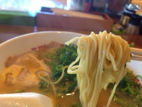 ラーメン横綱の麺