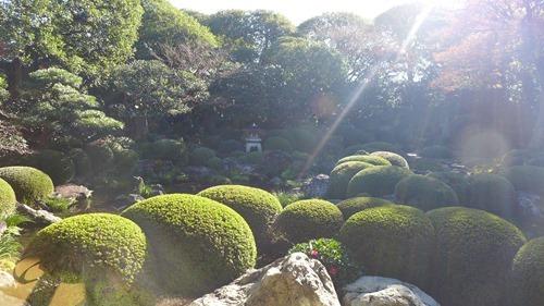 松阪市 海津本店 庭園
