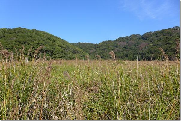 tomogashima226