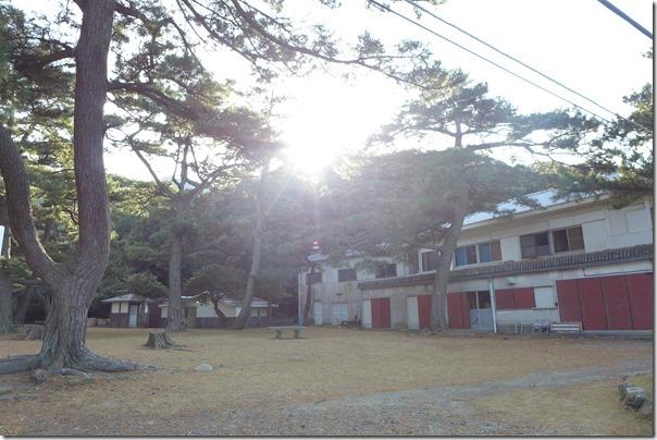 tomogashima245