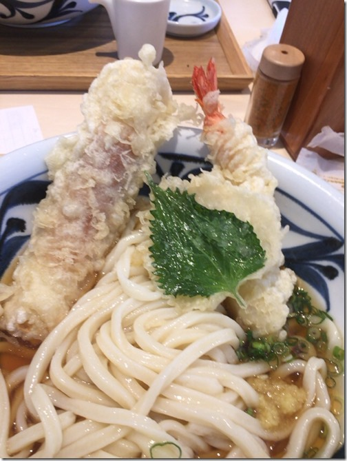 miyanoya-udon19